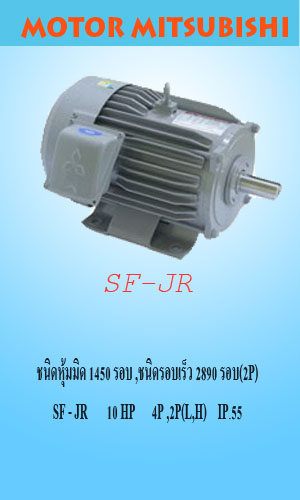 SF-JR 10 HP 4P,2P (L,H)IP.55
