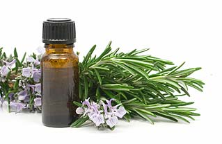 rosemary essential oil 1000ml