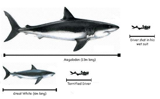 Monsters too Small: Even an Orca is Larger than a Goliath ...