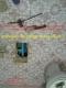 รีวิวเครื่องฟังหาน้ำรั่ว ท่อน้ำรั่วใต้พื้น หรือตามกำแพงจากลูกค้าที่ใช้จริง หาท่อน้ำรั่วได้จริง ฟ้องด้วยภาพค่ะ