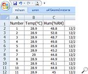Data Excel Format