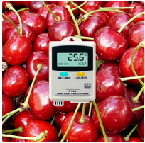 S100 Temperature Data Logger