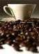 ผลการตรวจติดตามคุณภาพกาแฟคั่ว