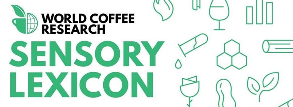 ปทานุกรมกาแฟ WCR Coffee Lexicon การพัฒนาที่ (จะ) ไม่หยุดยั้ง