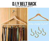Chic Idea for keep belt. by DIY