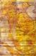 แผนที่ในราชอาณาจักรสยาม (Maps of Siam)