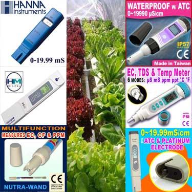 ความรู้ทั่วไปเกี่ยวกับการปลูกพืชโดยไม่ใช้ดิน ผักไฮโดรโปนิกส์ (Hydroponics)