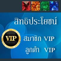 สิทธิประโยชน์สมาชิก VIP และ ลูกค้า VIP