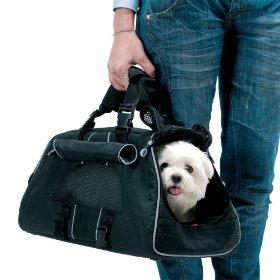 ข้อแนะนำในการเดินทางพร้อมสัตว์เลี้ยงโดยทางเครื่องบิน