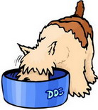 How to clean the dog bowls