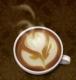 กาแฟอราบิก้า...ที่คั่วอย่างพิถีพิถันนั้สามารถนำคุณสมบัติเด่น ที่ให้รสชาติแตกต่างกันถึง 6 ชนิดด้วยกัน