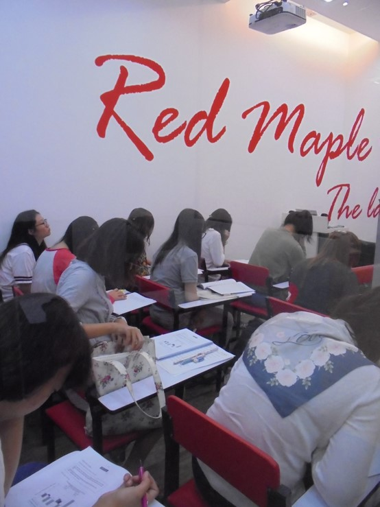 Red Maple - The Language