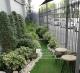 10 ต้นไม้มงคลปลูกเพื่อทำรั้วต้นไม้ [ Eco Fencing ]