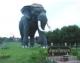 ช้างไทยในประวัติศาสตร์