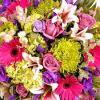 หัวน้ำหอมดอกไม้นานาพันธุ์ KAOWKLIN -