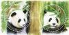 แสตมป์หมีแพนด้าชุด30 ปี ความสัมพันธ์ ทางการฑูต ระหว่างประเทศไทย กับสาธารณรัฐประชาชนจีน