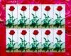แสตมป์ชุดดอกกุหลาบ ชุด 4 ปี 2548 เต็มแผ่น