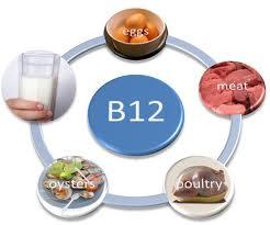 วิตามินบี Vitamin B ช่วยทำอะไรได้บ้าง ประโยชน์คืออะไร